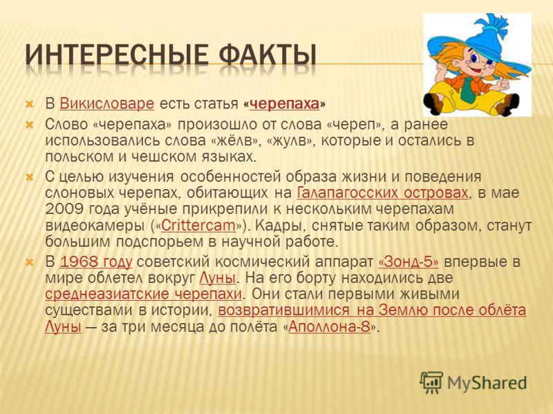 В Викисловаре есть статья «черепаха»Викисловаречерепаха Слово «черепаха» произошло от слова «череп», а ранее использовались слова «жёлв», «жулв», которые и остались в польском и чешском языках. С целью изучения особенностей образа жизни и поведения с