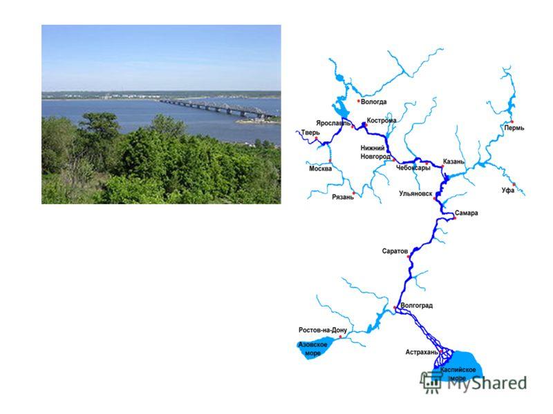 Презентация крупные реки россии 4 класс