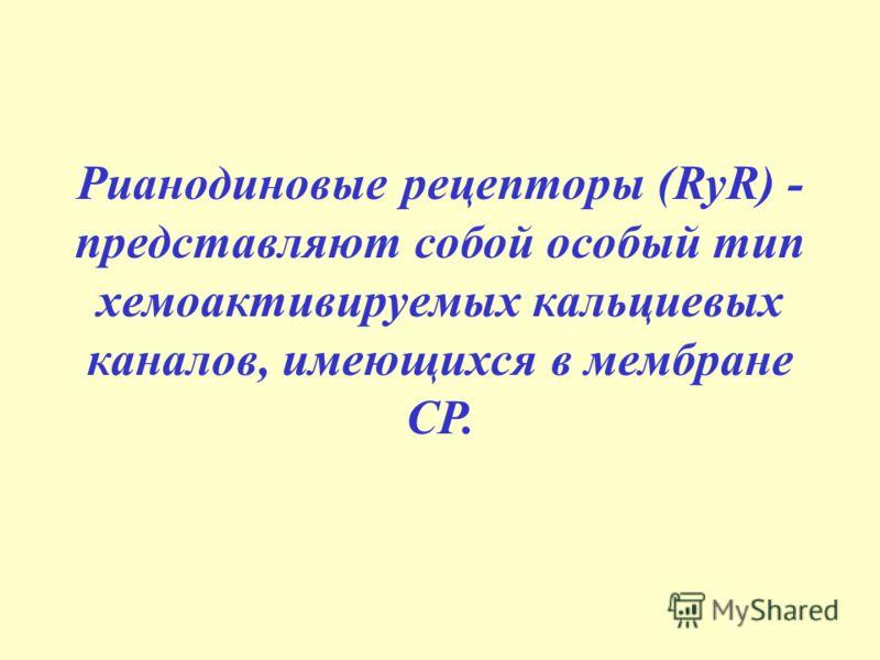 Рианодиновые рецепторы (RyR) - представляют собой особый тип хемоактивируемых кальциевых каналов, имеющихся в мембране СР.