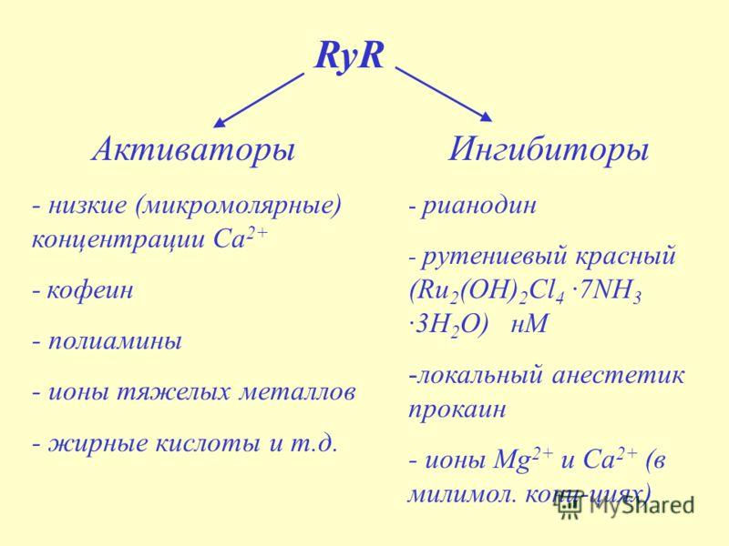 RyR Активаторы - низкие (микромолярные) концентрации Са 2+ - кофеин - полиамины - ионы тяжелых металлов - жирные кислоты и т.д. Ингибиторы - рианодин - рутениевый красный (Ru 2 (OH) 2 Cl 4 ·7NH 3 ·3H 2 O) нМ -локальный анестетик прокаин - ионы Mg 2+