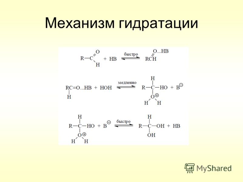 Механизм гидратации
