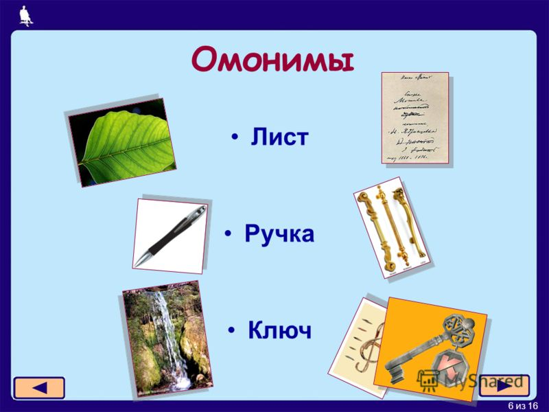 6 из 16 Омонимы Лист Ручка Ключ