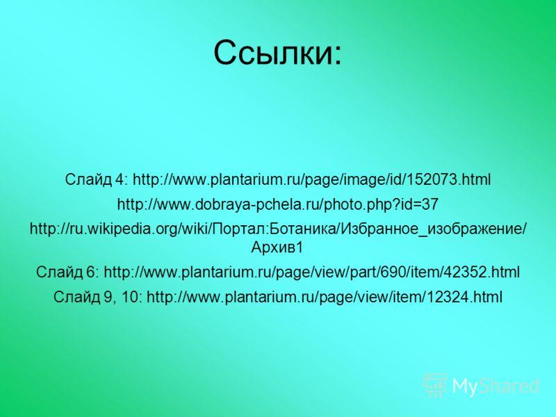 Ссылки: Слайд 4: http://www.plantarium.ru/page/image/id/152073.html http://www.dobraya-pchela.ru/photo.php?id=37 http://ru.wikipedia.org/wiki/Портал:Ботаника/Избранное_изображение/ Архив1 Слайд 6: http://www.plantarium.ru/page/view/part/690/item/4235