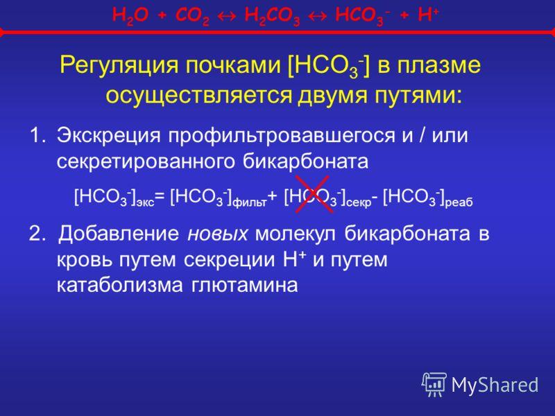 H 2 O + CO 2 H 2 CO 3 HCO 3 - + H + Регуляция почками [HCO 3 - ] в плазме осуществляется двумя путями: 1.Экскреция профильтровавшегося и / или секретированного бикарбоната [HCO 3 - ] экс = [HCO 3 - ] фильт + [HCO 3 - ] секр - [HCO 3 - ] реаб 2. Добав