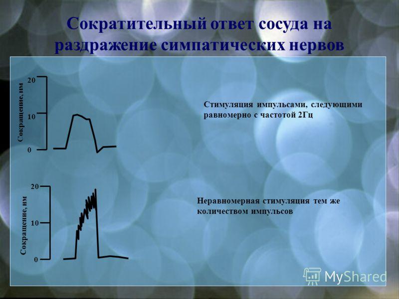 Симпатическая регуляция сосудов NA ATP NA ATP NPY P1P1 α2α2 γ2γ2 ATP Ca 2+ P 2x adenosine α1α1 NANPY Y1Y1 Ca 2+ Симпатический аксон Гладкомышечная клетка