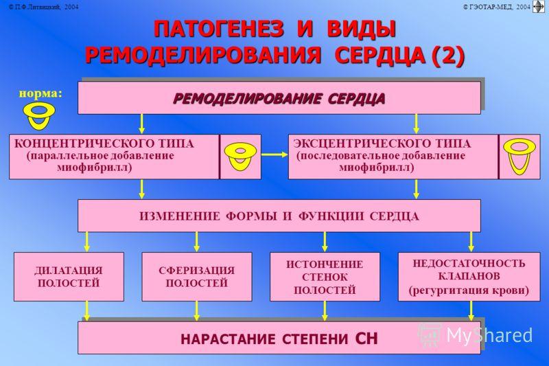 © П.Ф.Литвицкий, 2004 © ГЭОТАР-МЕД, 2004 ПАТОГЕНЕЗ И ВИДЫ РЕМОДЕЛИРОВАНИЯ СЕРДЦА (2) РЕМОДЕЛИРОВАНИЕ СЕРДЦА ИЗМЕНЕНИЕ ФОРМЫ И ФУНКЦИИ СЕРДЦА НАРАСТАНИЕ СТЕПЕНИ СН ДИЛАТАЦИЯ ПОЛОСТЕЙ СФЕРИЗАЦИЯ ПОЛОСТЕЙ НЕДОСТАТОЧНОСТЬ КЛАПАНОВ (регургитация крови) ИС