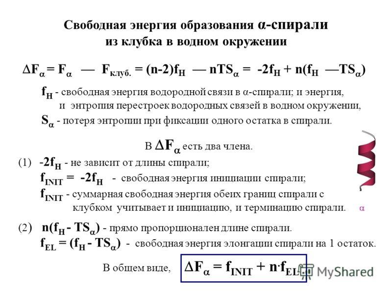 F = F F клуб. = (n-2)f H nTS = -2f H + n(f H TS ) Свободная энергия образования α-спирали из клубка в водном окружении f H - свободная энергия водородной связи в α-спирали; и энергия, и энтропия перестроек водородных связей в водном окружении, S - по