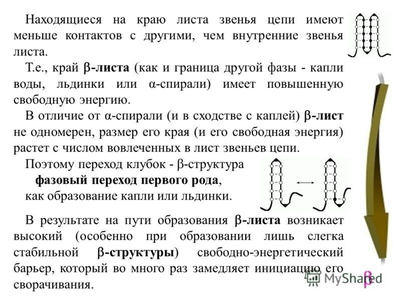 Находящиеся на краю листа звенья цепи имеют меньше контактов с другими, чем внутренние звенья листа. Т.е., край -листа (как и граница другой фазы - капли воды, льдинки или α-спирали) имеет повышенную свободную энергию. В отличие от α-спирали (и в схо