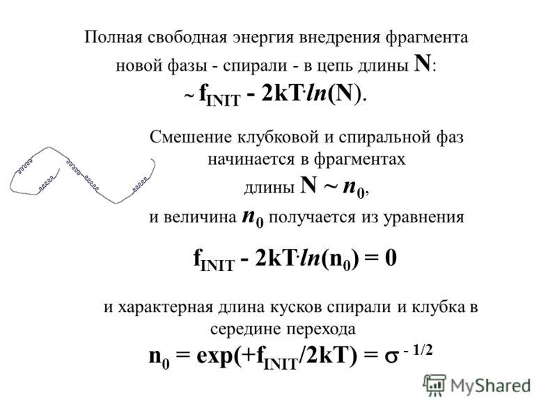 Смешение клубковой и спиральной фаз начинается в фрагментах длины N ~ n 0, и величина n 0 получается из уравнения f INIT - 2kТ. ln(n 0 ) = 0 Полная свободная энергия внедрения фрагмента новой фазы - спирали - в цепь длины N : f INIT - 2kТ. ln(N). и х