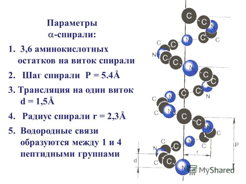 Параметры -спирали: 1. 3,6 аминокислотных остатков на виток спирали 2.Шаг спирали Р = 5.4Å 3. Трансляция на один виток d = 1,5Å 4.Радиус спирали r = 2,3Å 5. Водородные связи образуются между 1 и 4 пептидными группами