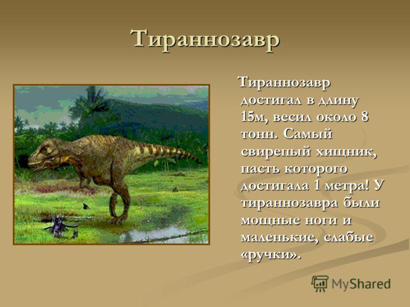 Тираннозавр Тираннозавр достигал в длину 15м, весил около 8 тонн. Самый свирепый хищник, пасть которого достигала 1 метра! У тираннозавра были мощные ноги и маленькие, слабые «ручки».