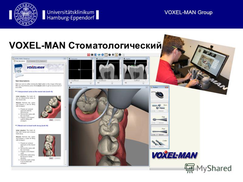 VOXEL-MAN Group VOXEL-MAN Стоматологический