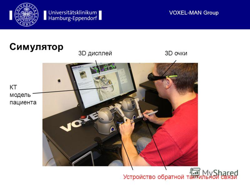 VOXEL-MAN Group Симулятор Устройство обратной тактильной связи 3D очки3D дисплей КТ модель пациента