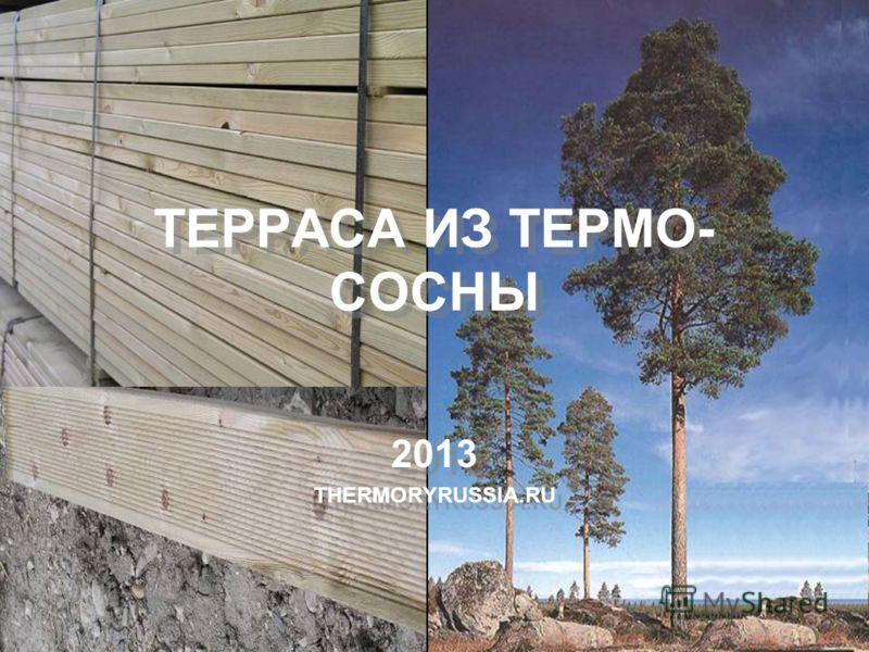 ТЕРРАСА ИЗ ТЕРМО- СОСНЫ 2013 THERMORYRUSSIA.RU 2013 THERMORYRUSSIA.RU