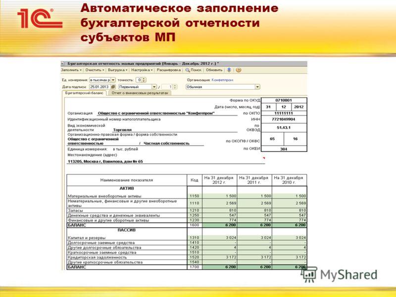 Автоматическое заполнение бухгалтерской отчетности субъектов МП