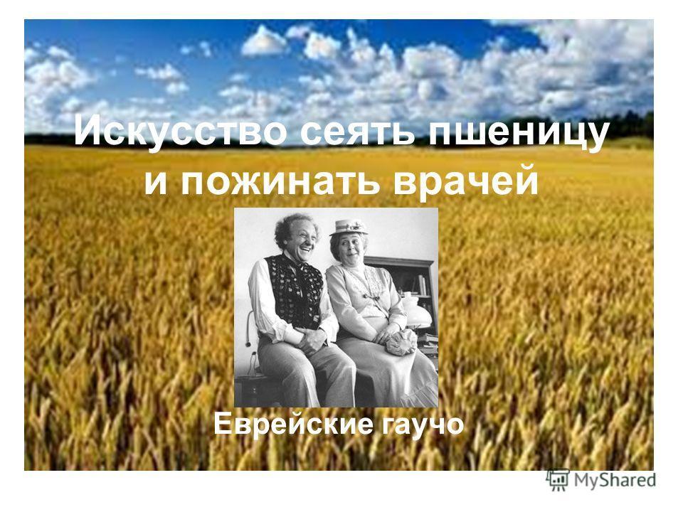 Искусство сеять пшеницу и пожинать врачей Еврейские гаучо
