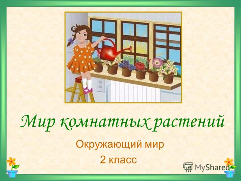 Презентация на тему Мир комнатных растений Окружающий мир  1 Мир комнатных растений Окружающий мир 2 класс