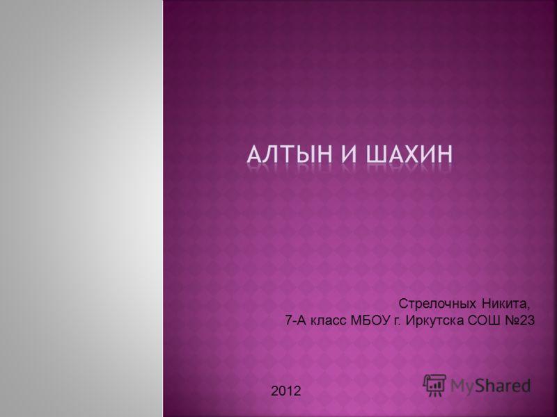 Стрелочных Никита, 7-А класс МБОУ г. Иркутска СОШ 23 2012