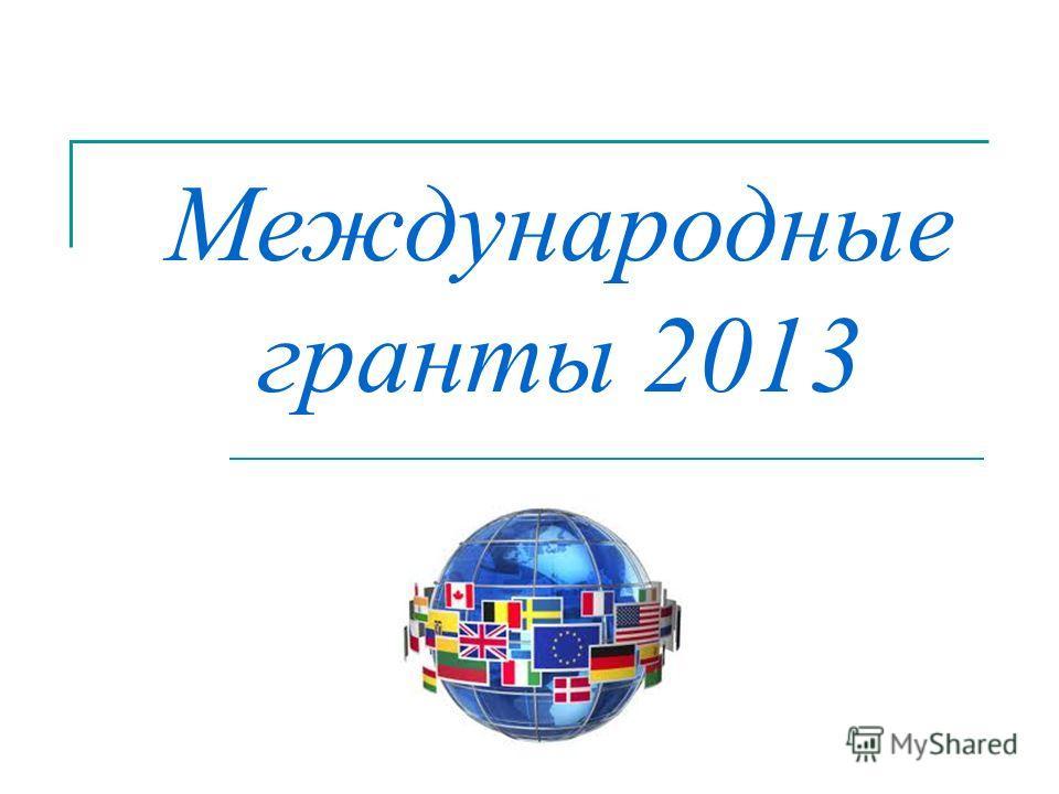 Международные гранты 2013