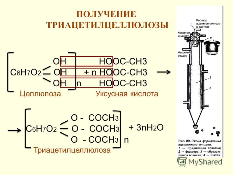 ПОЛУЧЕНИЕ ТРИАЦЕТИЛЦЕЛЛЮЛОЗЫ 13 ОН С 6 Н 7 О 2 ОН ОН n НООС-СН3 + n НООС-СН3 НООС-СН3 О - CОСН 3 С 6 Н 7 О 2 О - СОСН 3 О - СОСН 3 n + 3nН 2 О Целлюлоза Триацетилцеллюлоза Уксусная кислота
