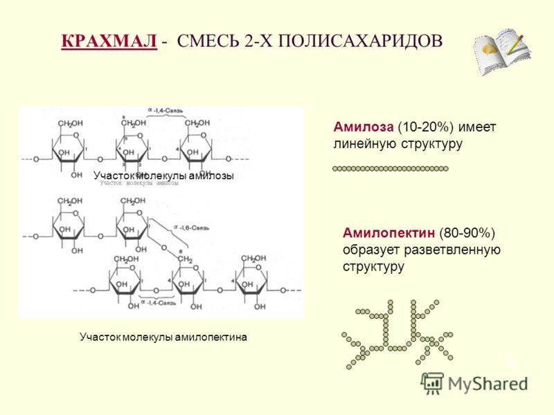 КРАХМАЛКРАХМАЛ - СМЕСЬ 2-Х ПОЛИСАХАРИДОВ 5 Амилоза (10-20%) имеет линейную структуру Амилопектин (80-90%) образует разветвленную структуру Участок молекулы амилозы Участок молекулы амилопектина