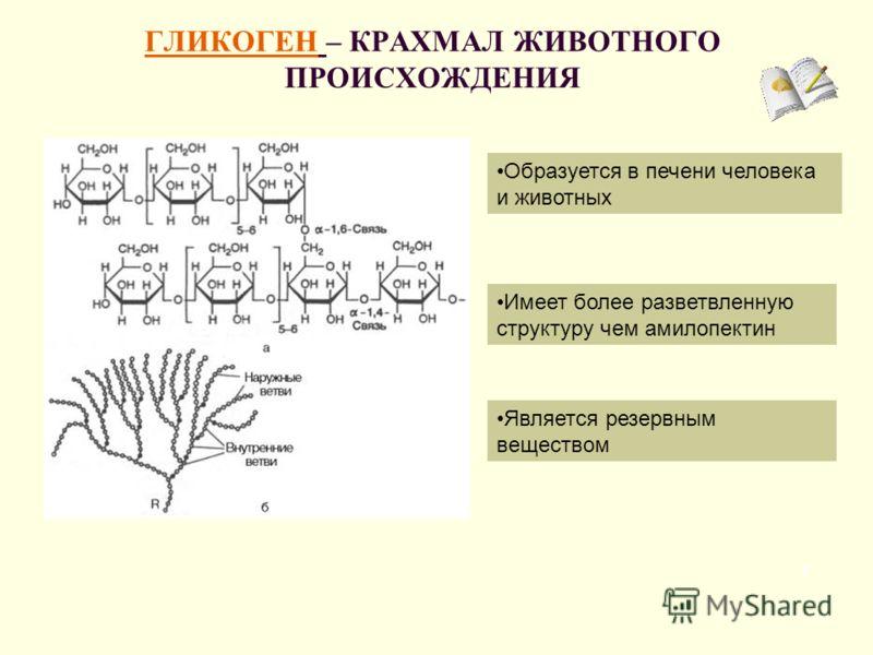 ГЛИКОГЕН – КРАХМАЛ ЖИВОТНОГО ПРОИСХОЖДЕНИЯ 7 Является резервным веществом Образуется в печени человека и животных Имеет более разветвленную структуру чем амилопектин