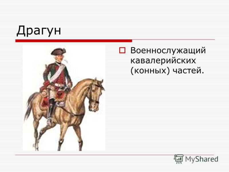 Драгун Военнослужащий кавалерийских (конных) частей.
