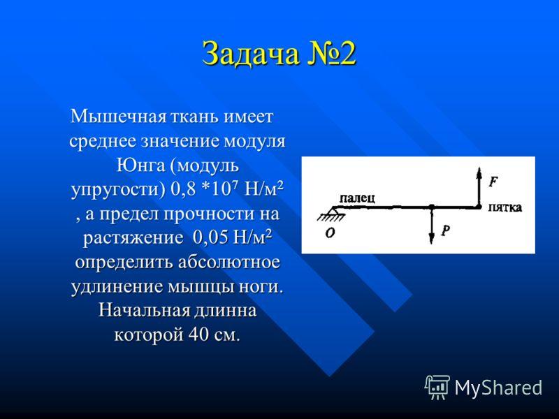 Задача 2 Мышечная ткань имеет среднее значение модуля Юнга (модуль упругости) 0,8 *10 7 H/м 2, а предел прочности на растяжение 0,05 Н/м 2 определить абсолютное удлинение мышцы ноги. Начальная длинна которой 40 см. Мышечная ткань имеет среднее значен