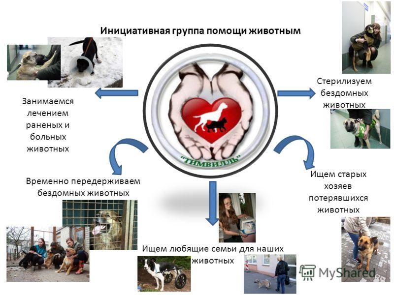 Инициативная группа помощи животным Временно передерживаем бездомных животных Занимаемся лечением раненых и больных животных Стерилизуем бездомных животных Ищем старых хозяев потерявшихся животных Ищем любящие семьи для наших животных