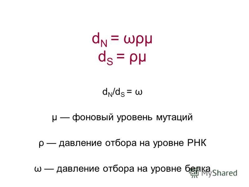 d N /d S = ω μ фоновый уровень мутаций ρ давление отбора на уровне РНК ω давление отбора на уровне белка d N = ωρμ d S = ρμ