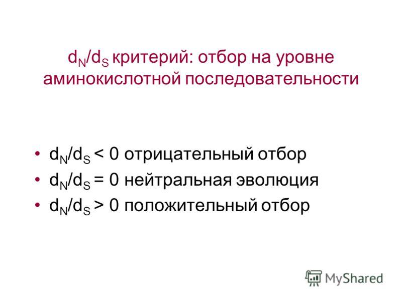 d N /d S критерий: отбор на уровне аминокислотной последовательности d N /d S < 0 отрицательный отбор d N /d S = 0 нейтральная эволюция d N /d S > 0 положительный отбор