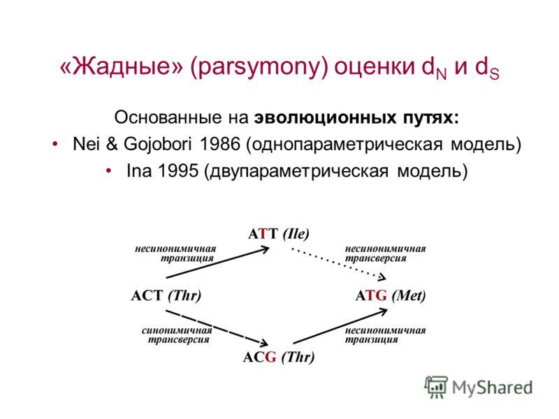 «Жадные» (parsymony) оценки d N и d S Основанные на эволюционных путях: Nei & Gojobori 1986 (однопараметрическая модель) Ina 1995 (двупараметрическая модель)