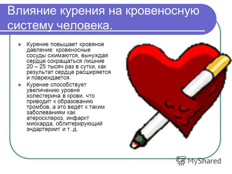 Влияние курения на кровеносную систему человека. Курение повышает кровяное давление: кровеносные сосуды сжимаются, вынуждая сердце сокращаться лишние 20 – 25 тысяч раз в сутки, как результат сердце расширяется и повреждается. Курение способствует уве