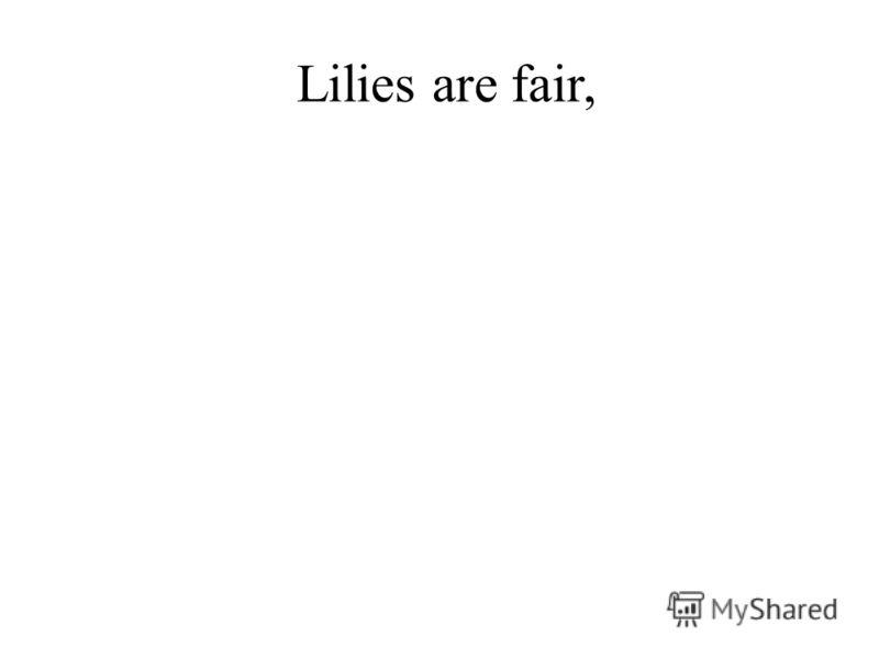 Lilies are fair,