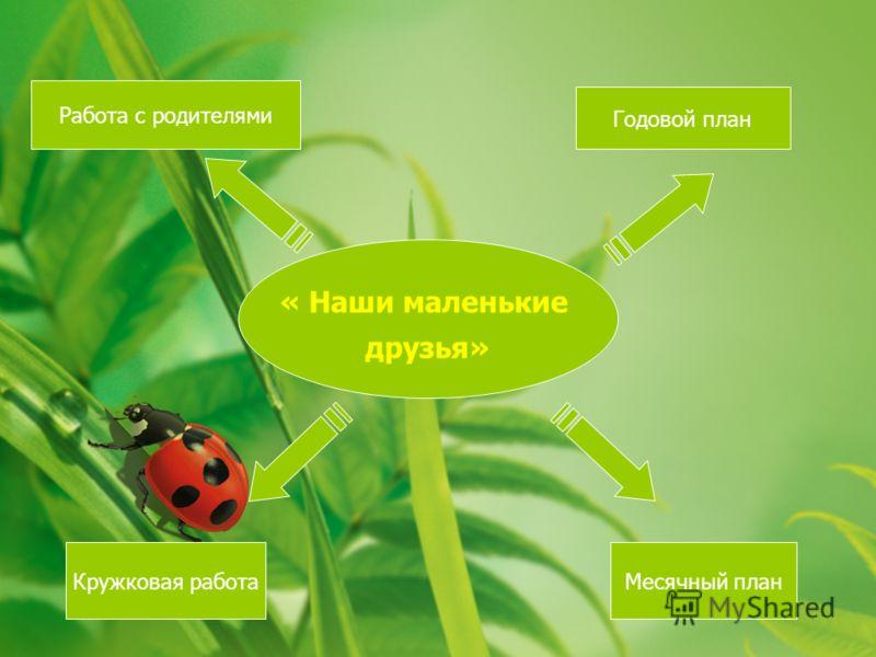 « Наши маленькие друзья» Работа с родителями Кружковая работаМесячный план Годовой план