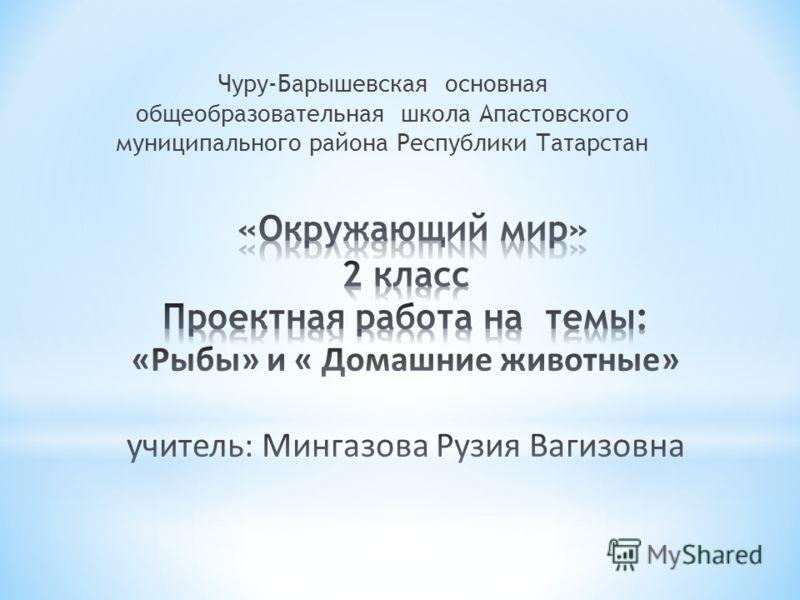 Чуру-Барышевская основная общеобразовательная школа Апастовского муниципального района Республики Татарстан