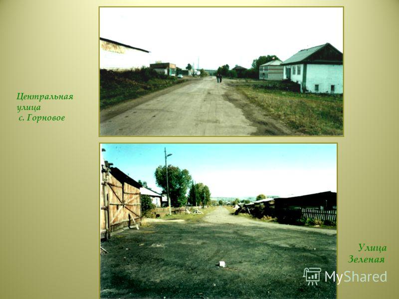 Центральная улица с. Горновое Улица Зеленая