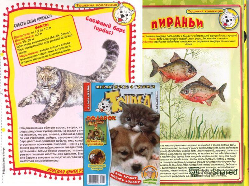 Есть самоделка и даже постер с фотографией какого-нибудь животного, который ребенок сможет собственноручно повесить на стену в детской. Если, конечно, в вашем доме дозволяются вольные дизайнерские решения. Публикуются в «Тошке» и рисунки, которые при