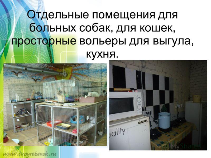 Отдельные помещения для больных собак, для кошек, просторные вольеры для выгула, кухня.