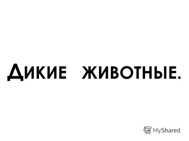 Д ИКИЕ ЖИВОТНЫЕ.