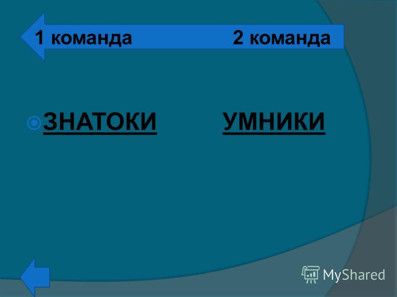 ЗНАТОКИУМНИКИ 1 команда2 команда