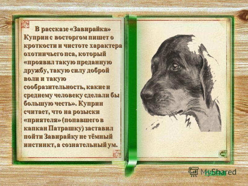 В рассказе «Завирайка» Куприн с восторгом пишет о кроткости и чистоте характера охотничьего пса, который «проявил такую преданную дружбу, такую силу доброй воли и такую сообразительность, какие и среднему человеку сделали бы большую честь». Куприн сч