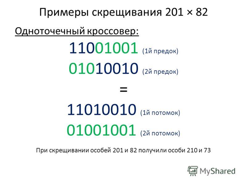Примеры скрещивания 201 × 82 Одноточечный кроссовер: 11001001 (1й предок) 01010010 (2й предок) = 11010010 (1й потомок) 01001001 (2й потомок) При скрещивании особей 201 и 82 получили особи 210 и 73