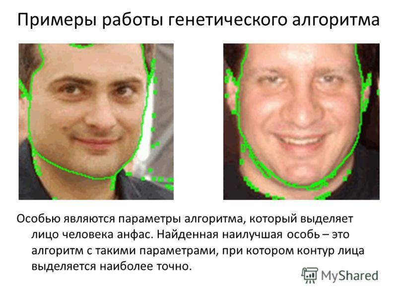 Примеры работы генетического алгоритма Особью являются параметры алгоритма, который выделяет лицо человека анфас. Найденная наилучшая особь – это алгоритм с такими параметрами, при котором контур лица выделяется наиболее точно.