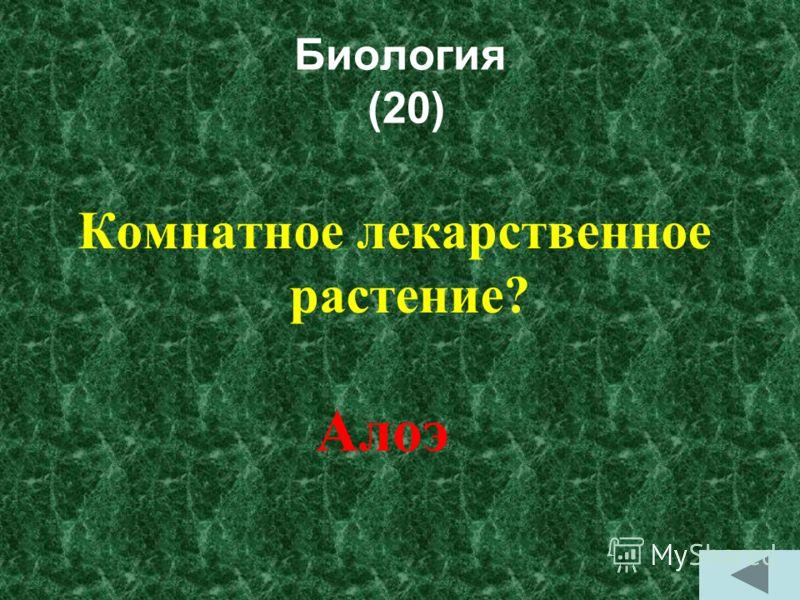 Биология (10) Кто такой лесной петух? Глухарь