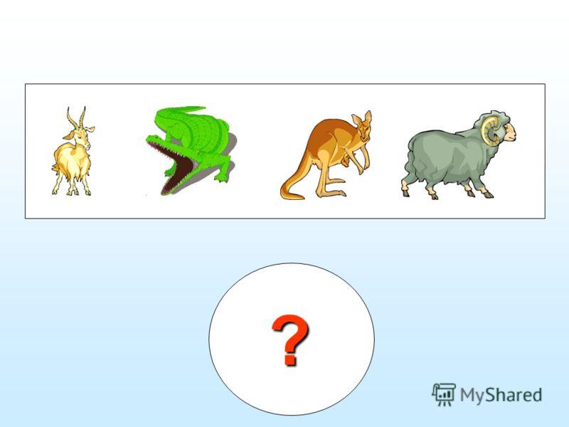 ? Найди лишнее - Жираф, олень, роза, носорог