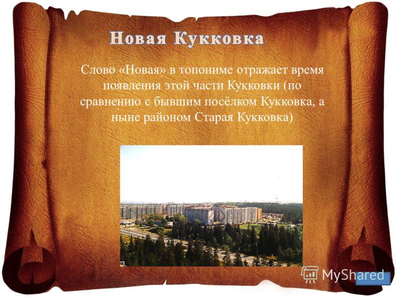 Слово «Новая» в топониме отражает время появления этой части Кукковки (по сравнению с бывшим посёлком Кукковка, а ныне районом Старая Кукковка)