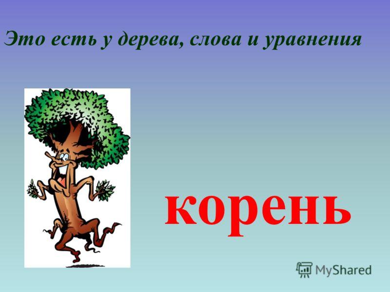 Это есть у дерева, слова и уравнения корень