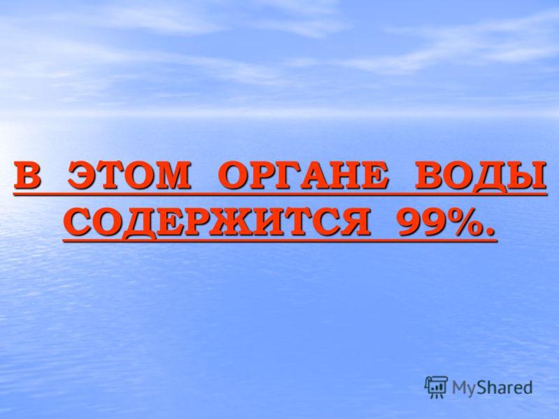 В ЭТОМ ОРГАНЕ ВОДЫ СОДЕРЖИТСЯ 99%. В ЭТОМ ОРГАНЕ ВОДЫ СОДЕРЖИТСЯ 99%.
