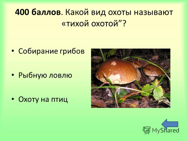 400 баллов. Какой вид охоты называют «тихой охотой? Собирание грибов Рыбную ловлю Охоту на птиц